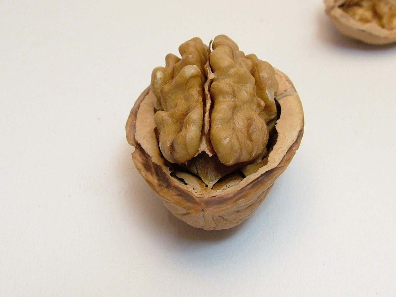 20-nut