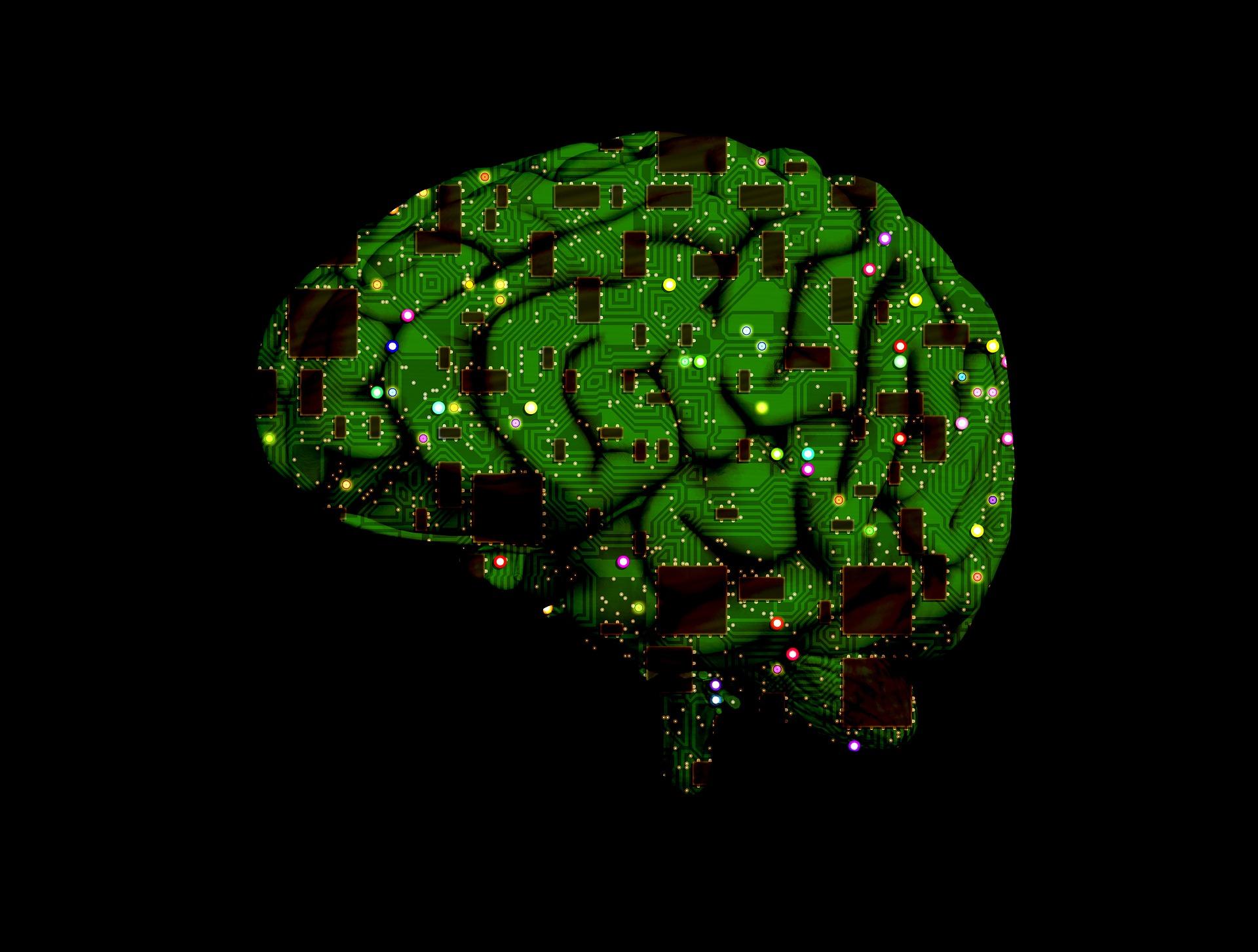 33-brain-circuits